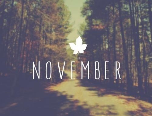 Les news des entrepreneurs-Novembre 2015